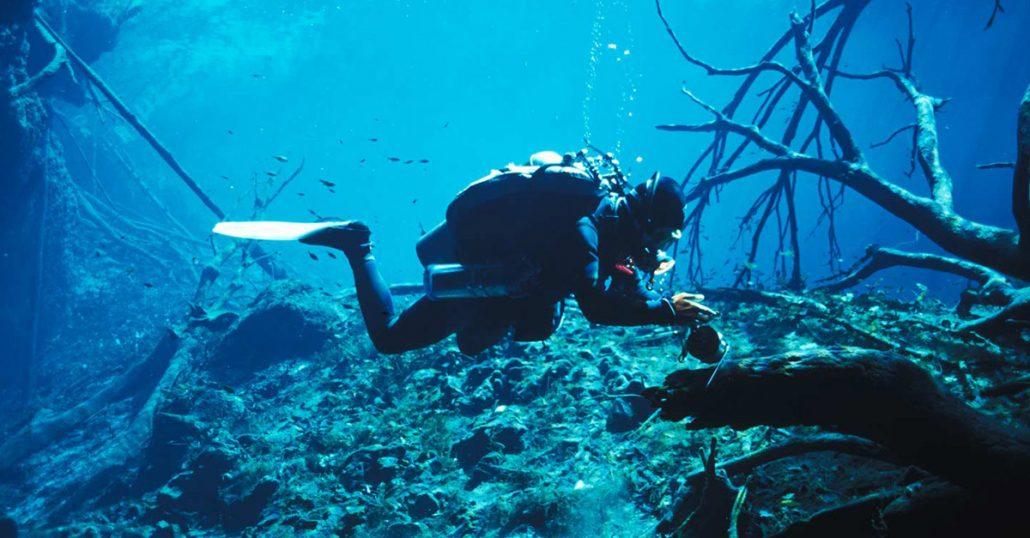 Decompression Procedures Diver