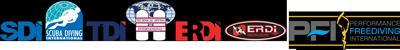 TDISDI Logo